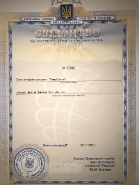 Авторские права на исходный код и на алгоритм Foceo Ping Queen